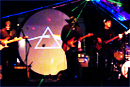 pink floyd tribute band laser show