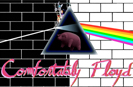 chicago rock bands pink floyd